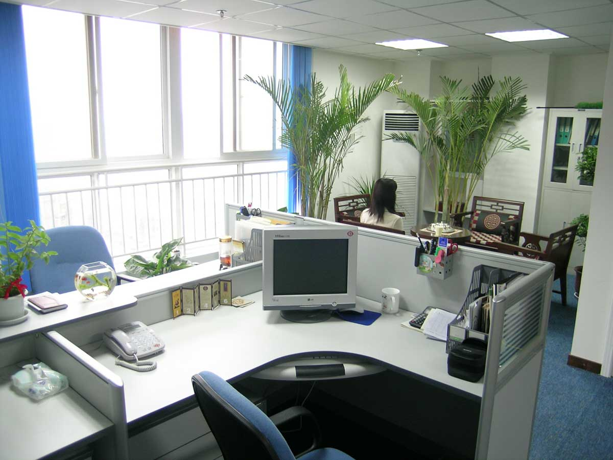 elegant and welcoming office environment design