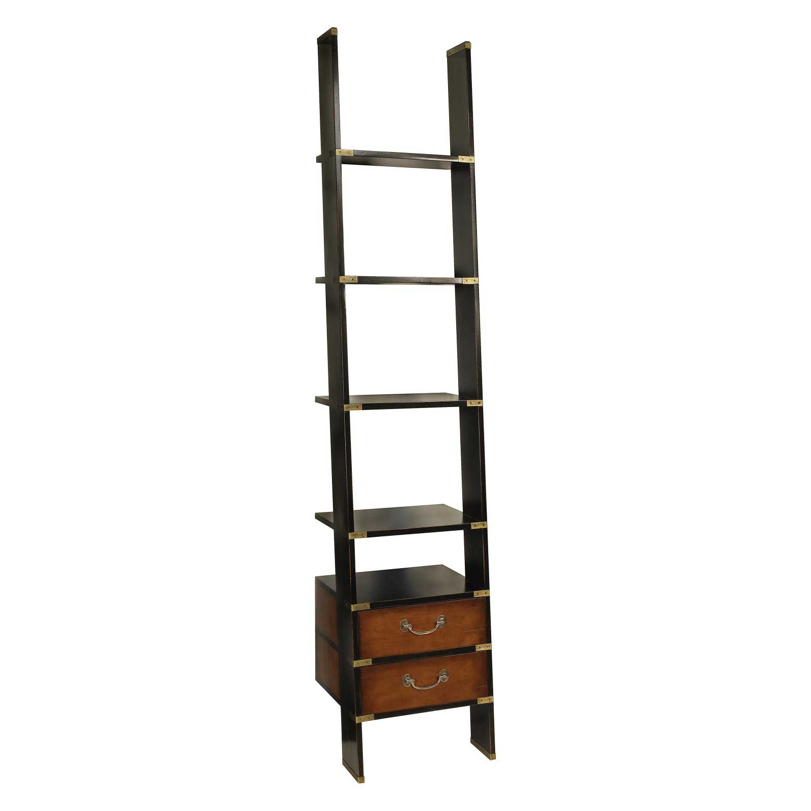 High Library Ladder Style