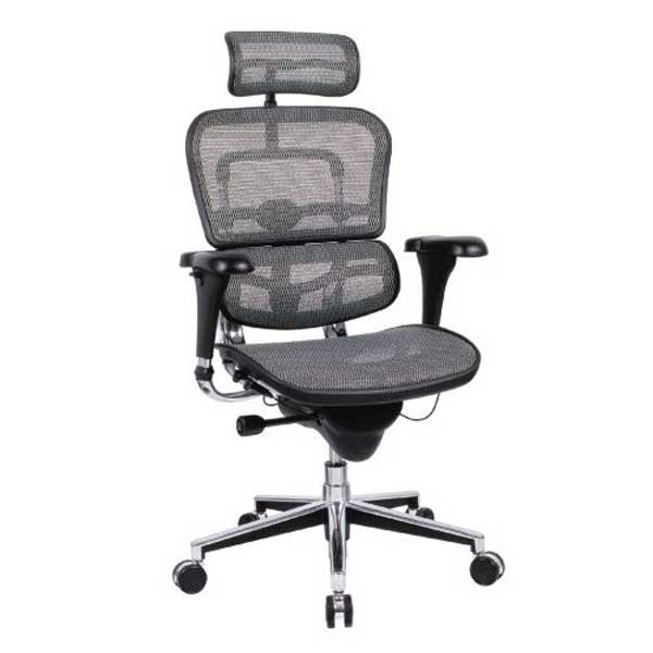 Herman Miller adjustable ergonomic Office Chairs